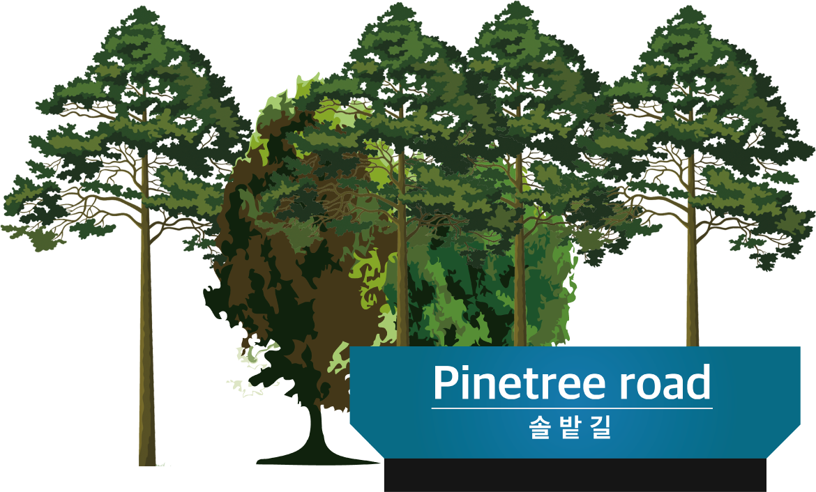 Pinetree road 솔밭길